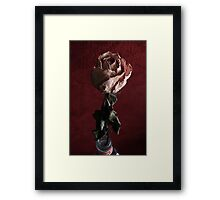 Mysterious Flower Framed Print