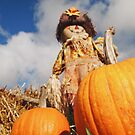 Scarecrow and Pumpkin by Eliza Sarobhasa