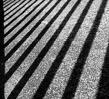 Behind Bars by Leanne Robson