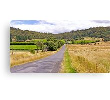 Road to Freycinet Vineyard Canvas Print