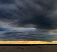 Cape May point panorama 12-31-11 by BILL JOSEPH