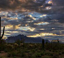 A Winter Sunrise in the Desert  by Saija  Lehtonen