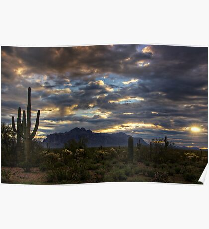 A Winter Sunrise in the Desert  Poster