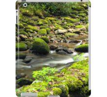 Mossy Wall iPad Case/Skin