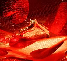 Engaged!! by Alyce Taylor