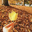 Gold Yellow Autumn Leaf by Eliza Sarobhasa