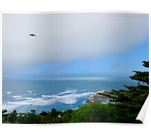 Sutro Gardens and the Ocean Poster