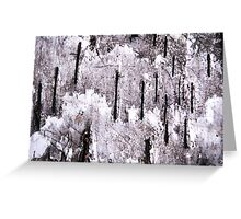 Winter Came Early (abstract) Greeting Card