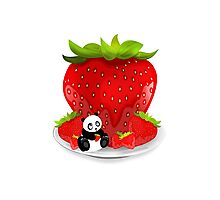 Panda & Strawberries  Photographic Print