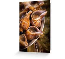 Snails for Dinner Greeting Card