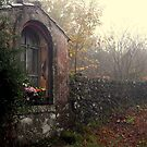 Devotions in the misty wood. by Turi Caggegi