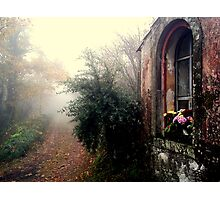 Devotions in the misty wood. #2 Photographic Print