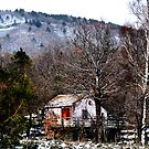 Red door in the snowy wood. In Sicily. by Turi Caggegi