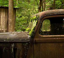 Vintage Dodge Truck by hmclark