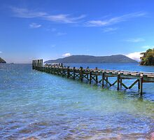 The Ship Cove Jetty - Marlborough Sounds by Paul Duckett