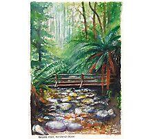 Bridge over Badgers Creek Photographic Print