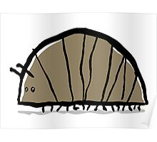 woodlouse Poster