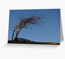Hampsfell Winter Sky Greeting Card