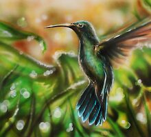 Hummingbird by markgetty