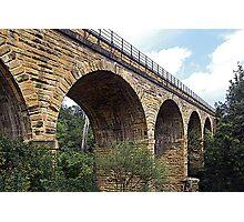 Picton Viaduct Photographic Print