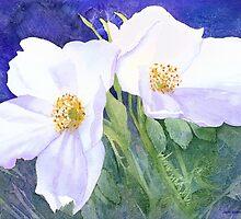 White rose (Rosa Rugosa Alba) by Jacki Stokes