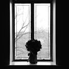 Lonely Window by Euge  Sabo