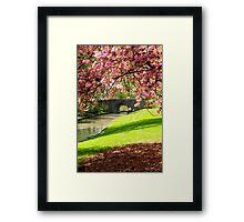 Blossoms... Framed Print
