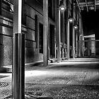 NightHawk series 11.1.12 by Wesley Hellyer
