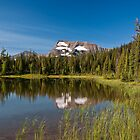 Lake Summit by Peter Luxem