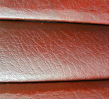 Leather Panels by Delights