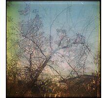 winter is easy Photographic Print