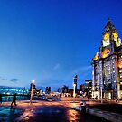 Liver Building  by Michelle McMahon