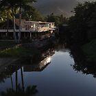 Another Nice Day In The Paradise - Otro Dia Bonito En El Paraiso by Bernhard Matejka