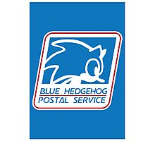 BLUE HEDGEHOG POSTAL SERVICE Photographic Print