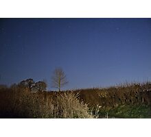 In The Night Sky.. Photographic Print