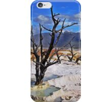 3 Trees iPhone Case/Skin
