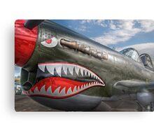 Curtiss P-40 Kittyhawk Metal Print