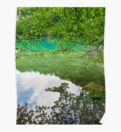 reflections of trees in Plitvice Lakes Poster