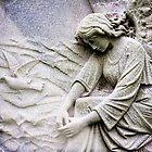 The Dove by olga zamora