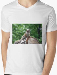 Red Squirrel Mens V-Neck T-Shirt