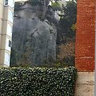 Bricks & Ivy-A Study In Contrasts by RobynLee