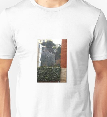 Bricks & Ivy-A Study In Contrasts Unisex T-Shirt