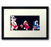 Ice Climber Complete Framed Print