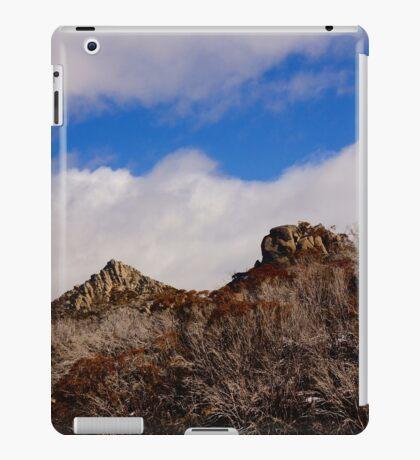The Horn iPad Case/Skin