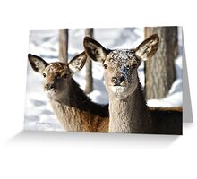 Two Heads Are Better Than One Greeting Card