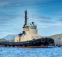 Albany Tug Boat by Eve Parry