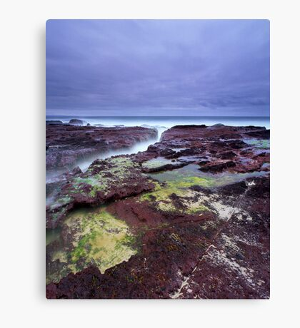 """Red Earth"" ∞ Haycock Point, NSW - Australia Canvas Print"