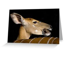 Don't Talk With Your Mouth Full ! Greeting Card