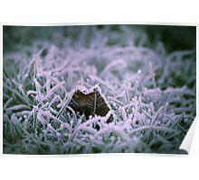 Jack Frost's Jewels, Emberton, Buckinghamshire Poster