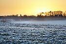 A Cold Gaulby Sunrise by Andy Freer